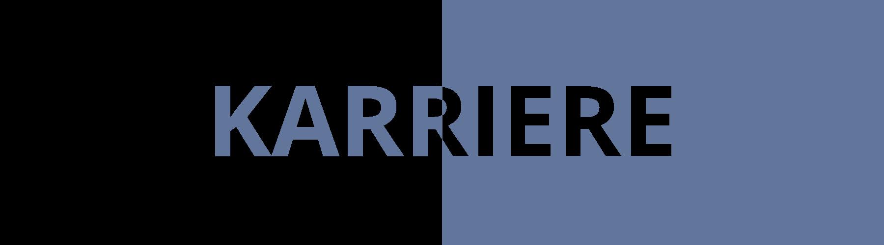 KARRIERE 500px transparent gerade lightblue